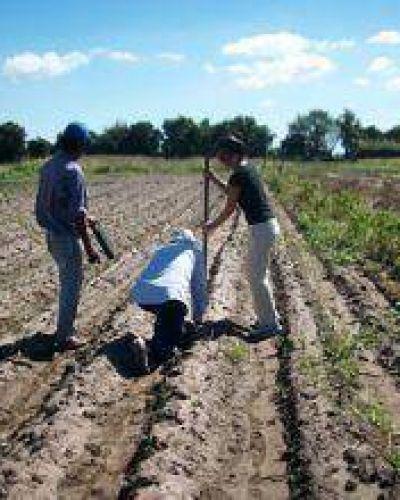 El Ministerio de la Comunidad fortalece plan de agricultura urbana