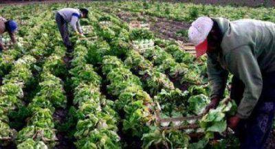 Capacitan sobre empaque de frutas y hortalizas