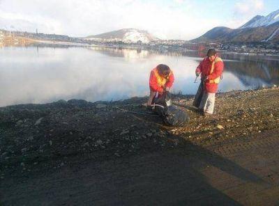 El Municipio mantiene la limpieza invernal de la pasarela Fique