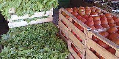Verduras seguir�n subiendo de precio