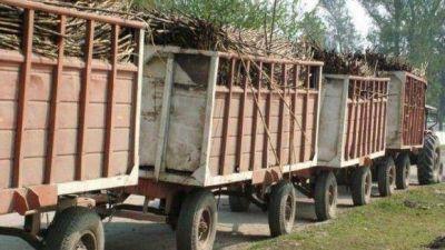 En los últimos días, la Dirección de Transporte secuestró más de 70 rastras cañeras
