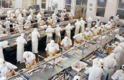Empresas del puerto adeudan el pago de la quincena y de la obra social