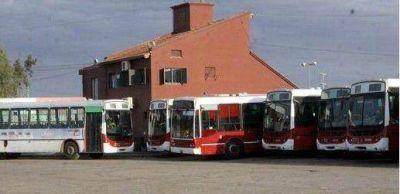 Comienzan a funcionar las nuevas unidades del transporte urbano
