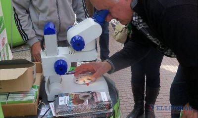 Chagas, una enfermedad olvidada con nuevo impulso para la investigación