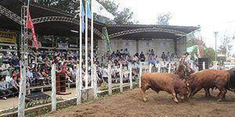Culmina hoy la exposición de ganadería, industria y comercio