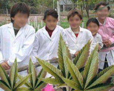 Preocupante situaci�n con la droga en las escuelas de Jujuy