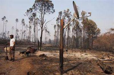 El fuego dejó un panorama desolador en las sierras de Córdoba