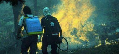 Los incendios evidenciaron el proceso de sojización que el Gobierno dice combatir