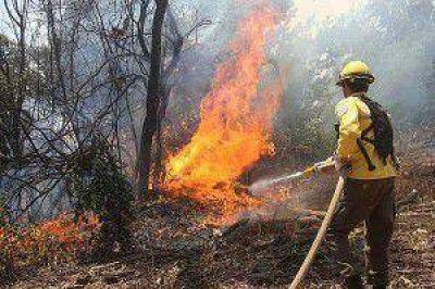 Incendios forestales en Jujuy: controlaron el incendio de río San Lorenzo pero en La Lucrecia la situación no cambió