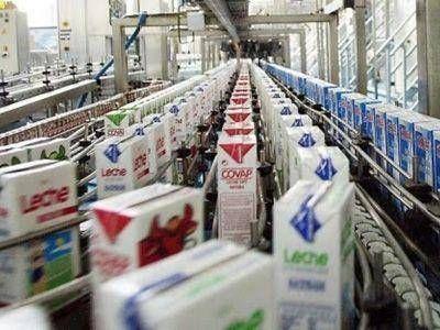 Entre las 20 empresas lácteas más importantes del mundo, China sube escalones y baja EE.UU