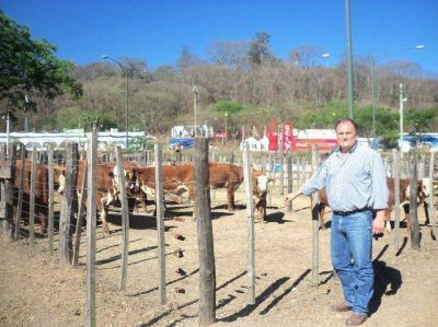 Jujuy mostrará su potencial en la Expo Rural Ganadera