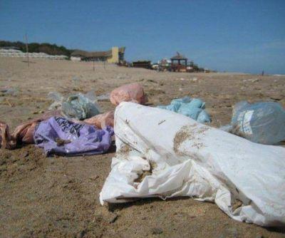 Realizar�n limpieza de playa en Punta Mogotes