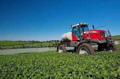 Agrotóxicos: un apicultor denunció una nueva fumigación ilegal