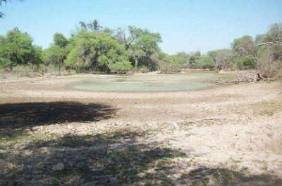Capitanich recibirá a la Sociedad Rural del Chaco por la sequía