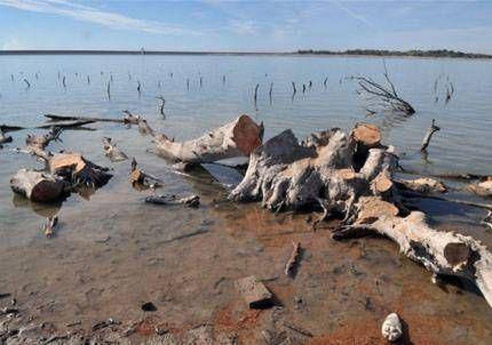 Extrajeron árboles secos que estaban sumergidos en el dique El Carrizal