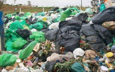 Plan de contingencia del Municipio: vivir en la basura