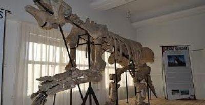 Museo Paleontológico y los horarios