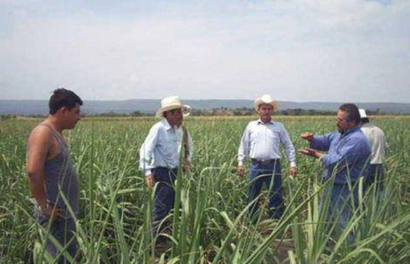 "La ""mesa constituyente"" sumó a sectores rurales"