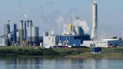 """Especialista alertó sobre la emisión de dioxinas """"cancerígenas"""" de UPM"""