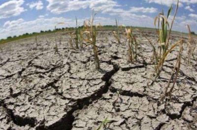 La Nación decretó la emergencia y desastre por la sequía en el Chaco