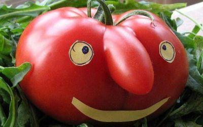 """Vuelve la """"napo"""": la semana que viene el kilo de tomate estará a $10"""