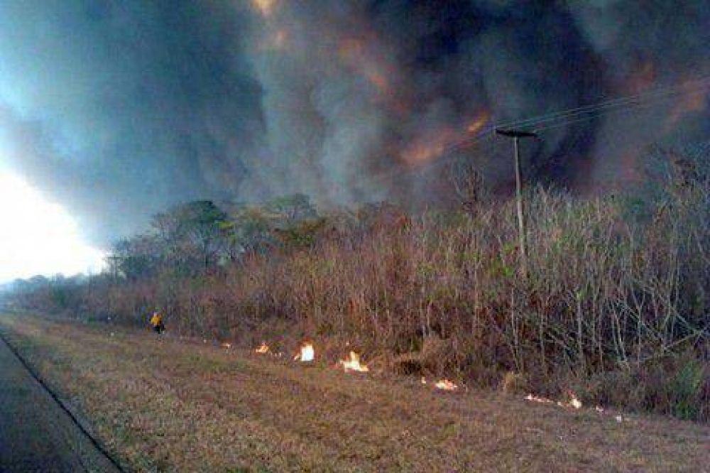 Más de 20 mil hectáreas fueron afectadas por los incendios forestales en la zona del ramal jujeño
