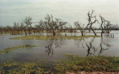 Lluvias mejoraron el deficit hidrico en gran parte del territorio provincial