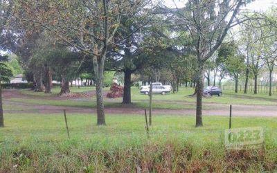 Peleas, agresiones y violencia: la historia detrás del asesinato en Lobería