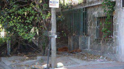Crimen en Villa Bosch: volvió a la casa del horror y terminó desmayada