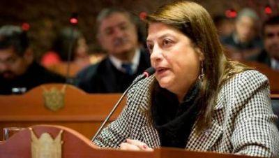 Moreta propone un acuerdo multipartidario por Potrero del Clavillo