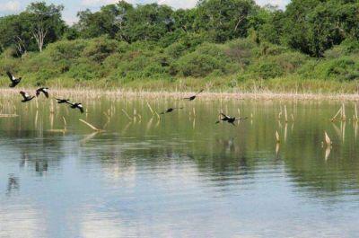 """Cederán """"La Fidelidad"""" para la creación del Parque Nacional El Impenetrable"""