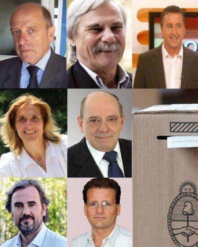 Legislativas 2013: 7 listas se disputan 12 bancas
