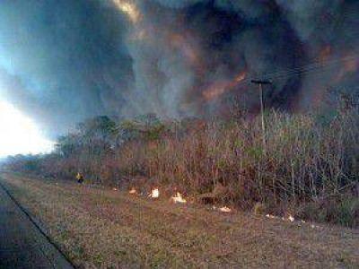 Tratan de controlar un incendio en la zona del Parque Nacional Calilegua