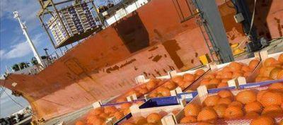 Fuerte caída de las exportaciones de productos agropecuarios en últimos 4 años