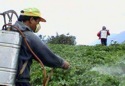 Advierten sobre el uso de agrotóxicos