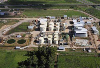 La industria local de biodiésel trata de salvarse con el mercado interno