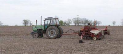 Chaco: destacan buenas condiciones de humedad para las siembras