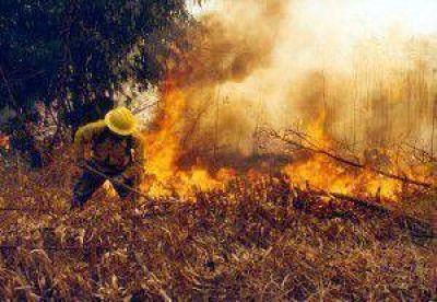 Continúa fuera de control el incendio forestal en el ramal jujeño