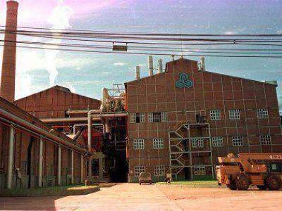Ledesma bajó producción en casi un 28 por ciento