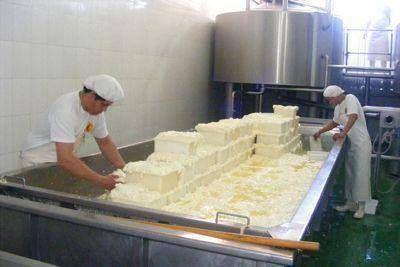 Incorporando procesos de gestión ambiental en la industria láctea