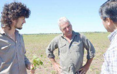 Grave denuncia contra pooles de siembra por el uso de herbicidas que provocan serios daños a productores