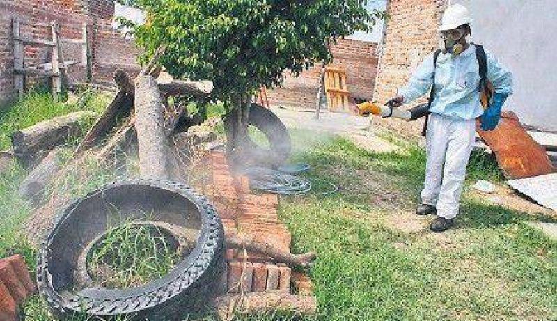 El dengue no cede: en un mes los casos subieron 14%
