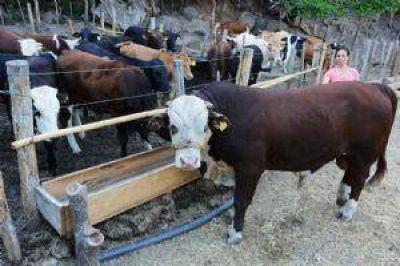 Los productores de Ica�o respaldaron el Programa Ganadero Provincial