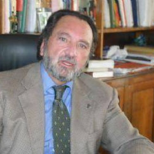 Gustavo Demarchi