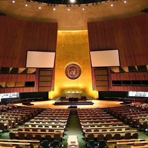 Asamblea General de las Naciones Unidas (AGNU)