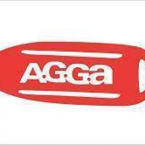 Asociación de Guardavidas General Alvarado (AGGA)