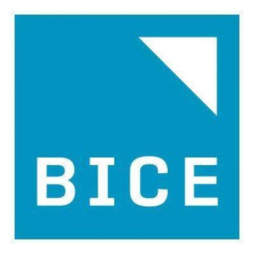 Banco de Inversiones y Comercio Exterior (BICE)