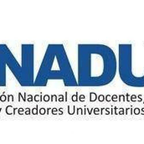 Federaci�n Nacional de Docentes Investigadores y Creadores Universitarios (Conadu-Hist�rica)