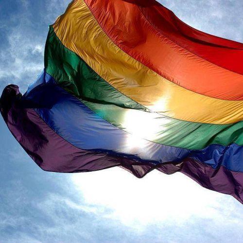 Lesbianas, Gays, Bisexuales, Trans, Intersexuales y Queers (LGBTIQ)