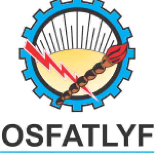 Obra Social de la Federaci�n Argentina de Trabajadores de Luz y Fuerza (OSFATLYF)